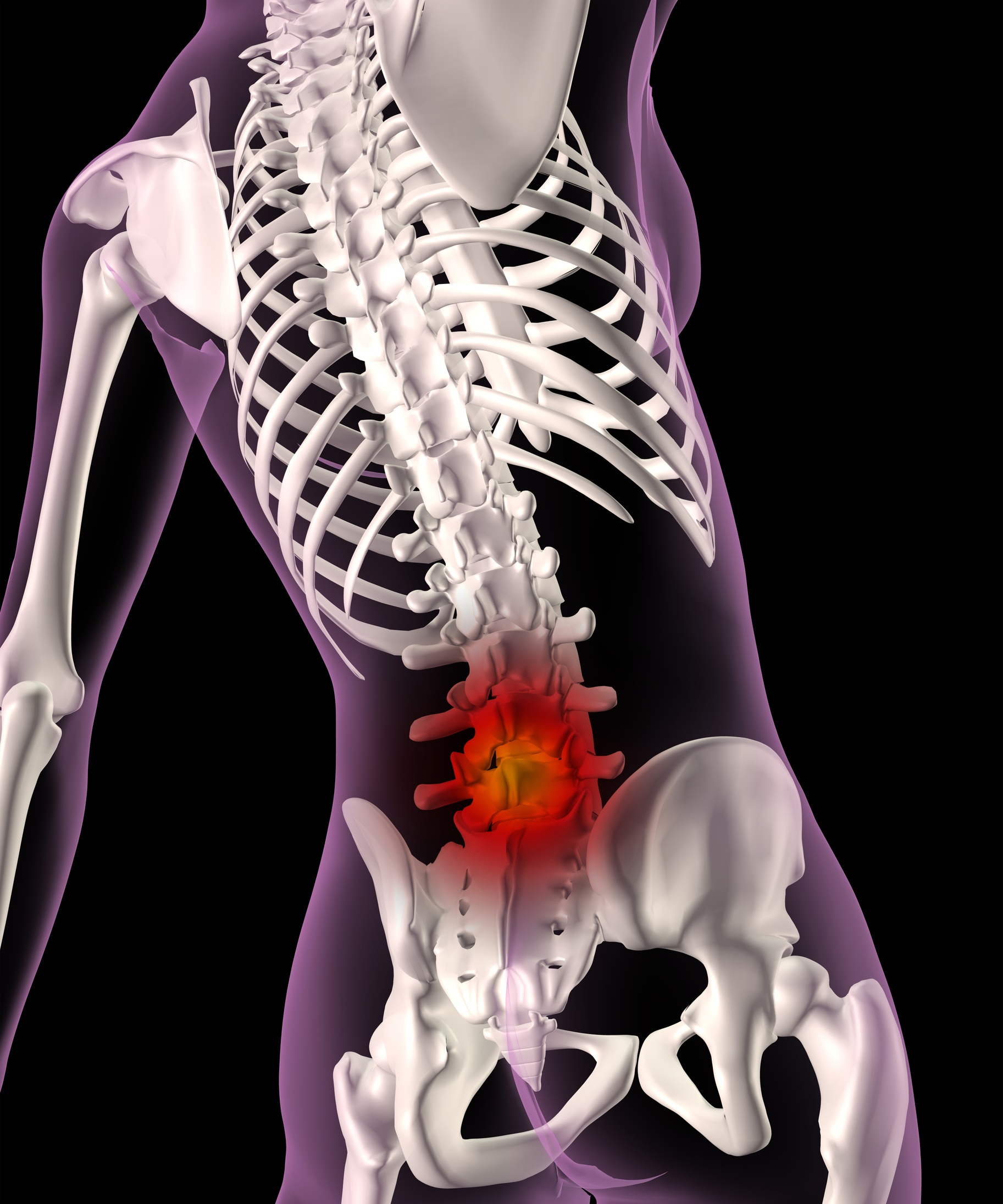 Human spine, ribs and lower back pain